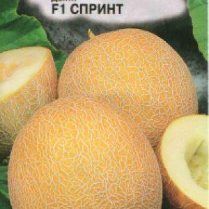 ДЫНЯ СПРИНТ F1 ^(5ШТ) Семко